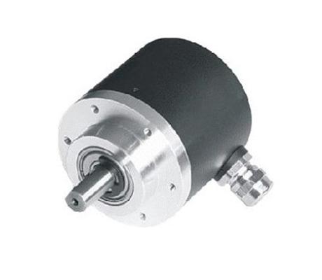 JITKES传动联轴器Pt型梅花联轴器Pt80-100-24-45